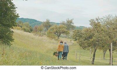 ältere paare, mit, grandaughter, gartenarbeit, in, der, hinterhof, garden.