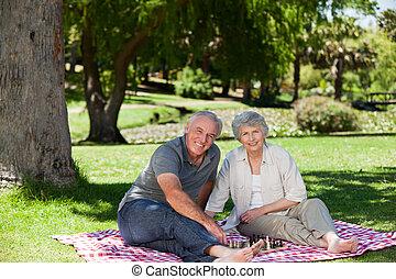 ältere paare, picnicking, in, der, ga