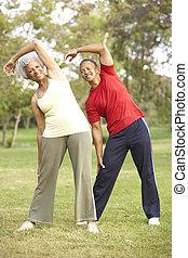 ältere paare, trainieren, park