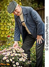 älterer mann, mit, blume