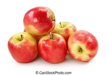 äpple, rosa, dam