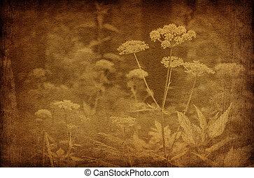 årgång, abstrakt, blomningen, bakgrunder, skog