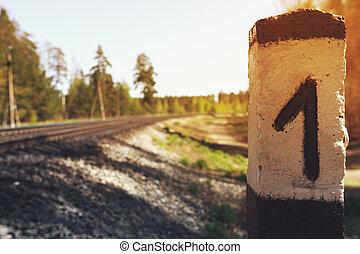 årgång, järnväg transportera, lokaliserat, in, den, skog