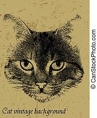 årgång, tema, bakgrund, katt