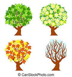 årstider, fire, træer