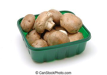 æske, brun, oppe, svampe, lukke