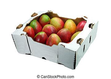 æske, mangoer, æn