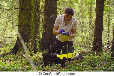 échantillons, prendre, écologiste, scientifique, forêt, ...