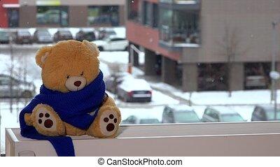 écharpe, jouet, radiateur, teddy, séance, ours, fenêtre., enfant, ami, prendre