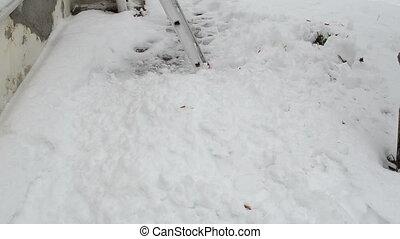 échelle, serre, neige