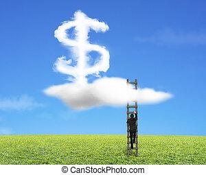 échelle, signe dollar, forme, bois, homme affaires, escalade, nuage
