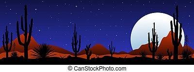 éclairé par la lune, mexicain, nuit désertique