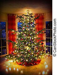 éclairé, vivant, room., arbre, décoré, noël
