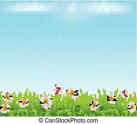 éclat, camomille, pelouse, soleil, ciel, arrière-plan., papillons, vecteur, herbe verte, rayon