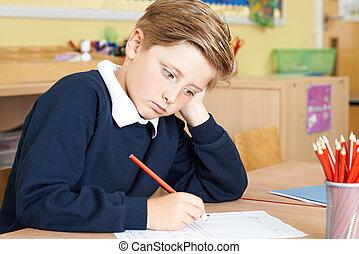 école, mâle, pupille, bureau, élémentaire, percé