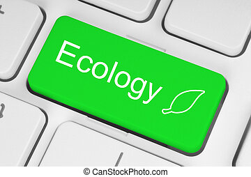 écologie, concept, sur, vert, clavier, bouton