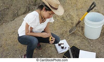 écologiste, femme, inspection, échantillons