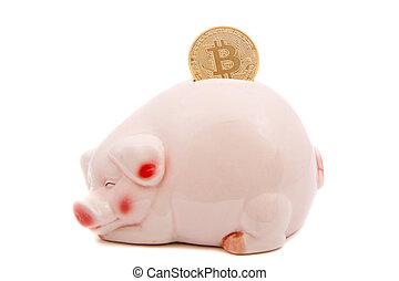 économie, bitcoins, banque, porcin