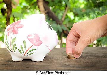 économie, nature, argent, concept., porcin, fond, banque
