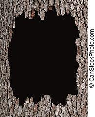 écorce, arbre, espace, noir, copie
