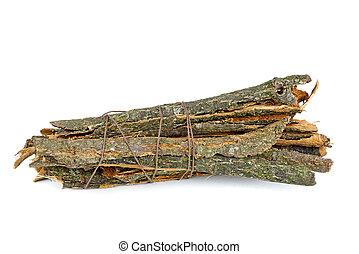 écorce, chêne, morceaux