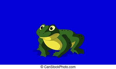 écran bleu, coasser, isolé, grenouille