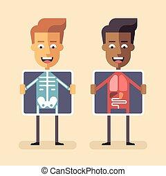 écran, hommes, xray, leur, organes, projection