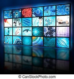 écran, recherche, biologie, exposer