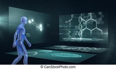 écrans, côté, marche, homme, vue, scientifique, 3d