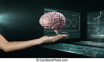 écrans, cerveau, tenue, femme, scientifique, 3d