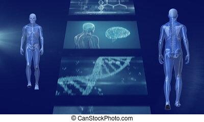 écrans, devant, marche, vue, humain, défilement, arrière, ...