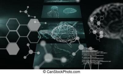 écrans, informatique, cerveau, humain, défilement, ...