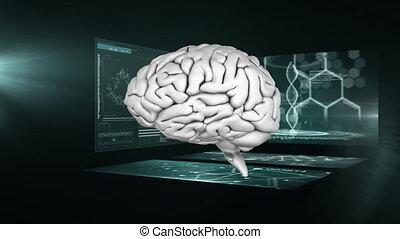 écrans, tourner, animation, cerveau, fond, scientifique, 3d