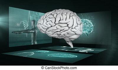écrans, tourner, cerveau, humain, fond, scientifique, 3d