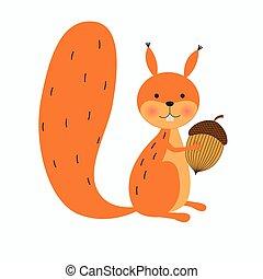 écureuil, gland