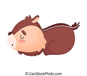 écureuil rayé, isolé, illustration, arrière-plan., vecteur, sleeps., blanc, dessin animé