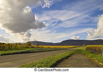 ég, felett, wineyards