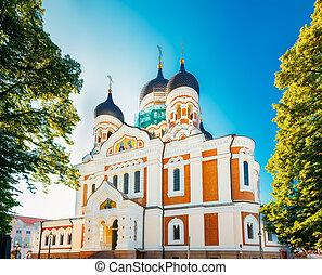 église, orthodoxe, alexandre, cathédrale, cathédrale, nevsky