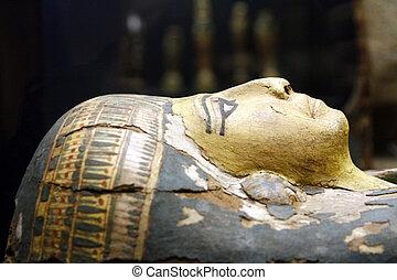 égyptien, momie, cercueil