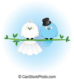 élégant, palefrenier, oiseaux, mariée