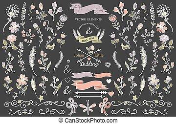 éléments, coloré, décor, frontières, floral, ensemble, doodles