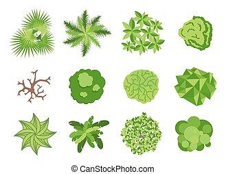éléments, conception, jardin, landscaping