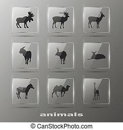 éléments, eps10, icônes, set., -, créatif, animal.