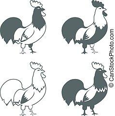 éléments, isolé, vecteur, conception, fond, poulet, blanc