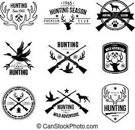 éléments, logo, étiquettes, conception, chasse, insignes