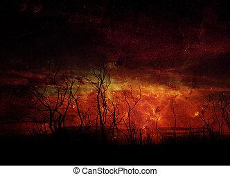 éléments, silhouette, meublé, ceci, ciel, image, arbre, contre, nasa, rigide, nuit