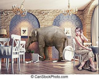 éléphant, calme, restaurant