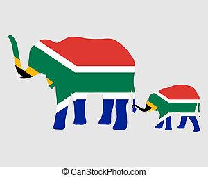 éléphant, et, bébé, drapeau, de, afrique sud