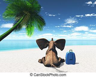 éléphant, plage, assis