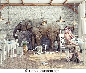 éléphant, restaurant